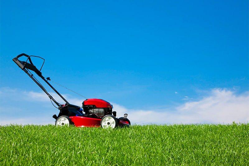 инструменты для стрижки травы