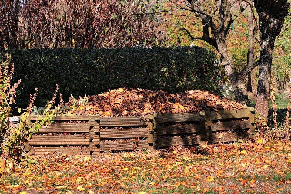 компост из листвы